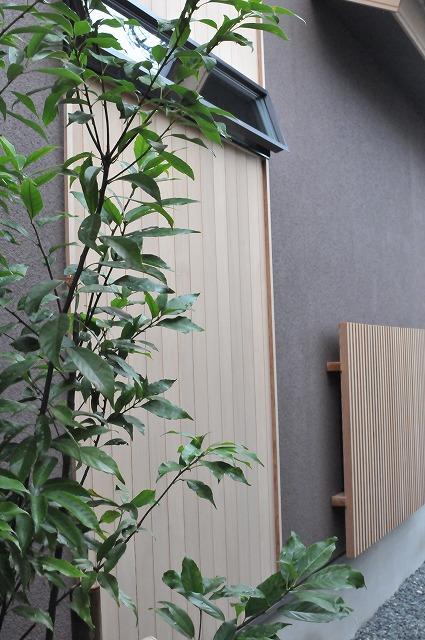 吹付塗装色と米杉が高い質感を醸し出す